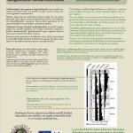 La importancia de las turberas en los estudios paleoambientales