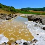 Manantial salina  en Caicedo-Yuso