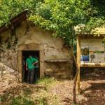 Paneles de LIFE TREMEDAL en Galicia (1)