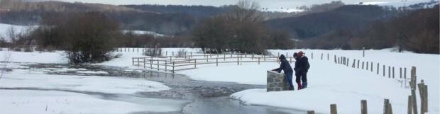 El Día Mundial de los Humedales se celebra en Navarra bajo un manto de nieve (12/02/2013)